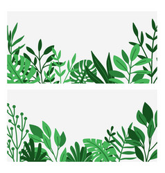 green leaves and herbs border vector image