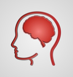 human brain in head vector image