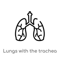 Outline lungs with trachea icon isolated vector