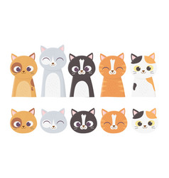 pet cats faces differents feline breed cartoon vector image