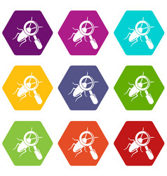 search insect icons set 9 vector image