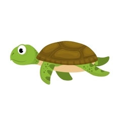 tortoise sea life animal icon graphic vector image