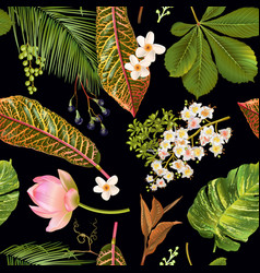 tropical plants pattern vector image
