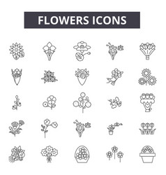 flowers line icons signs set outline vector image