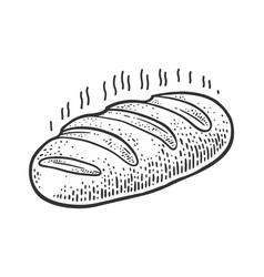 Fresh loaf bread sketch vector
