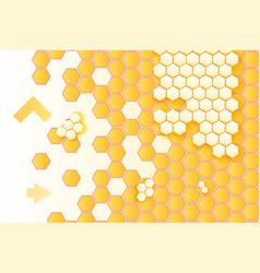 honeycombs and arrows background vector image