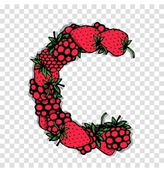 Letter C made from red berries sketch for your vector