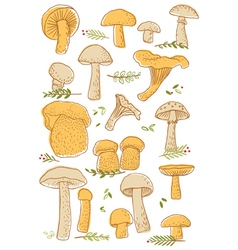 Mushrooms doodle set vector