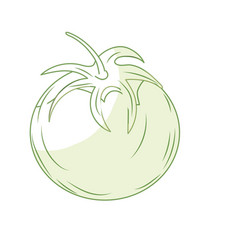 Silhouette fresh tomato natural vegetable vector