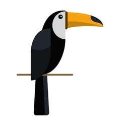 Brazilian toucan bird nature vector