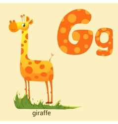 Letter G with Cute Giraffe vector image