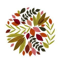 autumn leaves decoration vector image