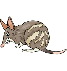 bandicoot animal cartoon vector image