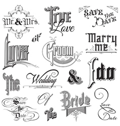 Calligraphic Wedding Elements vector