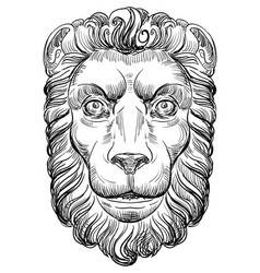 Hand drawing lion-2 vector