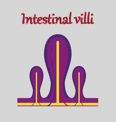 Human organ icon in flat style intestinal villi vector