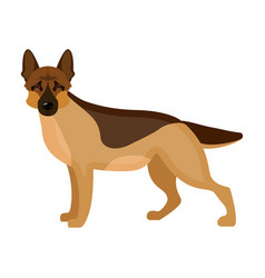 shepherd single icon in cartoon style dog vector image