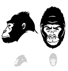 stylized gorilla head vector image