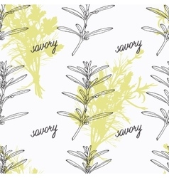 Hand drawn savory branch and handwritten sign vector image vector image