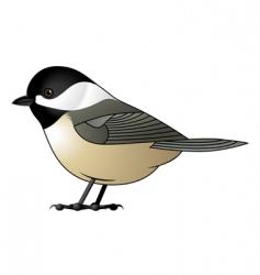 chickadee vector image vector image