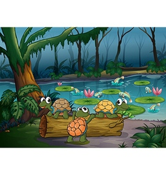 A forest with turtles and fishes at the pond vector image