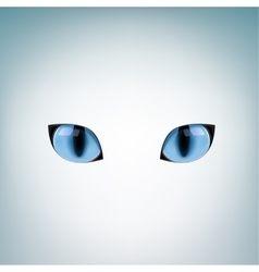 Blue cat eyes vector