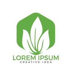 green leaf ecology nature design vector image