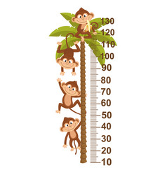 Growth measure with monkey on palm vector
