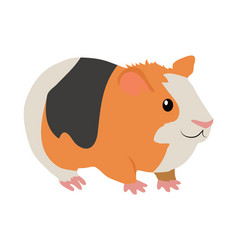 Guinea pig cartoon icon in flat design vector