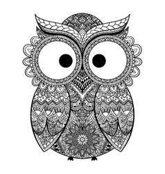 Owl Bird in vector