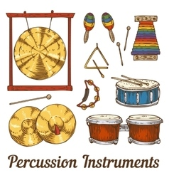 Percussion Musical Instruments vector image