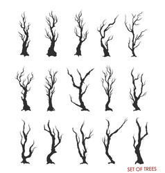 set dead trees and branches vector image