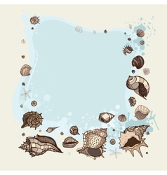 Summer Frame of seashells vector image