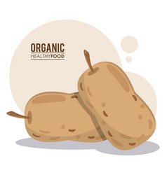 Organic healthy food nutrition vector