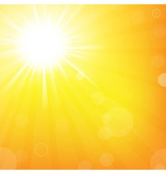 Sun With Sunburst vector image vector image