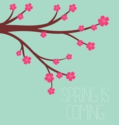 A spring season in flat style - cherry blossoms vector