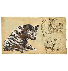 Animals theme FELIFORMIA - an hand drawn pack vector image