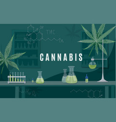 cannabis medical research in a laboratory hemp vector image