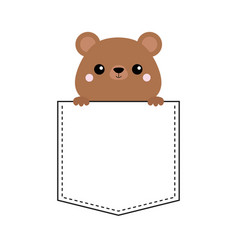 grizzly bear head face in pocket pink cheeks vector image