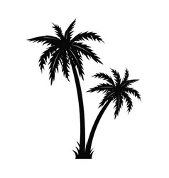 palm tree black silhouette isolated white vector image