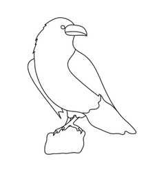 Crow of viking god icon in outline style isolated vector image vector image