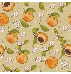 Apricot pattern vector