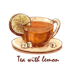 Colored hand drawn cup of tea with lemon vector