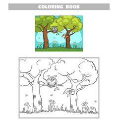 coloring book forest owl squirrel vector image