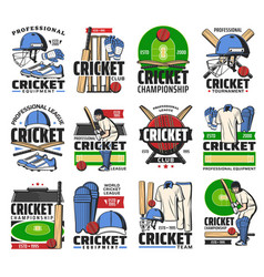 Cricket sport ball bat player and stadium icons vector