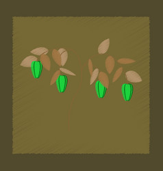 Flat shading style plant capsicum vector