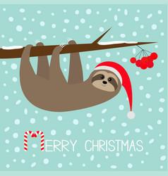 Merry christmas sloth animal hanging on rowan vector