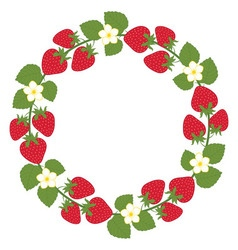 Strawberry Wreath vector image