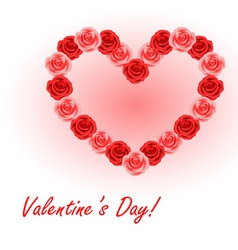 Valentines roses vector image