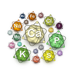 Various microelements macroelements and minerals vector